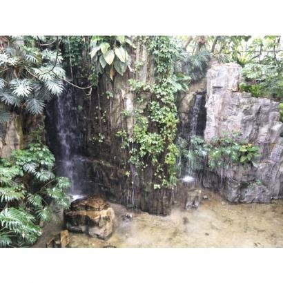 台中科博館假山